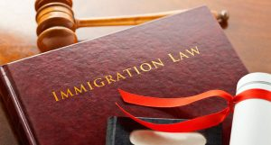 immigration lawyers