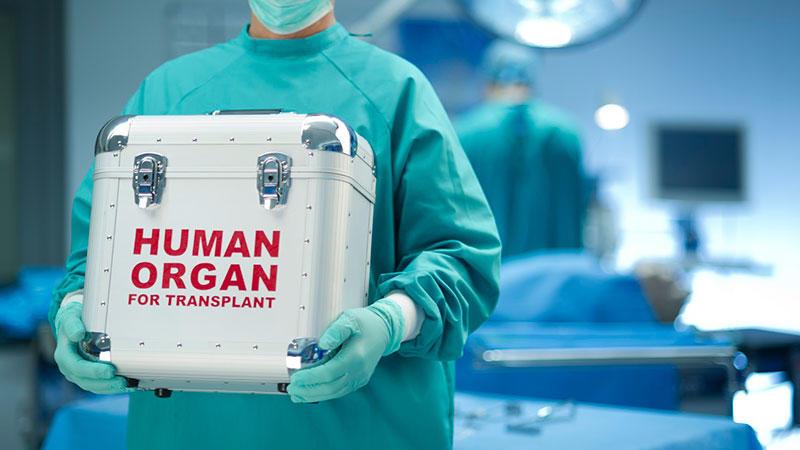 organ transplants center